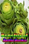Benefits of Artichoke screenshot 1/4