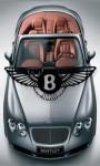Bentley Car Logo screenshot 1/1