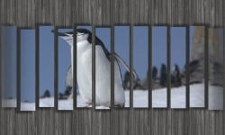 Slideshow Video FotoDream Free screenshot 1/5
