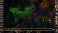 Baldurs Gate  2 veritable screenshot 4/6