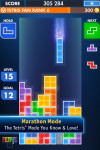 Tetris Fully Loaded screenshot 1/2