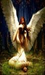 Angel Wings Live Wallpaper screenshot 2/3
