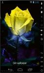Rainbow Art Rose Live Wallpaper screenshot 2/3