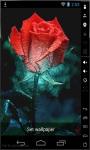 Rainbow Art Rose Live Wallpaper screenshot 3/3