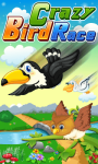 Crazy Bird Race screenshot 1/1