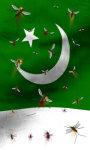 Pakistan flag free screenshot 2/5