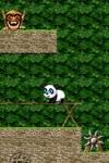 Panda! Jump&Run Free screenshot 1/1