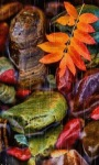Colorful Leaves Live Wallpaper screenshot 2/3