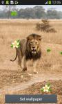 Lion Live Wallpapers screenshot 4/6