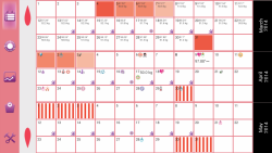 Calendario WomanLog Pro modern screenshot 6/6