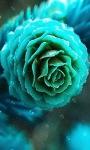 Flower Bubble Live Wallpaper screenshot 2/3