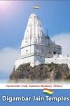 Digambar Jain Temples screenshot 1/1