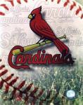 St Louis Cardinals Fan screenshot 1/4