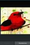 Angry Clumzy Bird screenshot 5/6