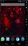 Rose Raining Live Wallpaper screenshot 1/2