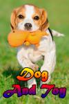 Dog And Toy screenshot 1/3