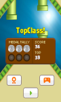 Teeter Bird - Flappy Bird Version screenshot 5/5