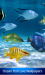 Ocean Fish Live Wallpapers screenshot 1/6