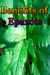 Benefits of Epazote screenshot 1/4