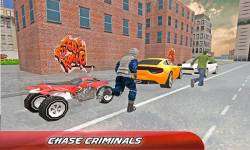 Police Quad Chase: 4x4 Sim screenshot 3/4