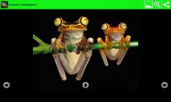 Hot Animals Wallpapers screenshot 5/6