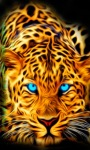 Blue Eyes Tiger Live wallpaper screenshot 3/3