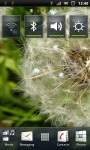 Blowing Dandelion Live Wallpaper screenshot 1/3