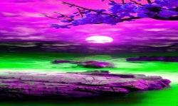 Purple Nature Live Wallpaper screenshot 2/3
