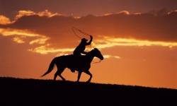 Cowboy Best Wallpaper HD screenshot 1/2