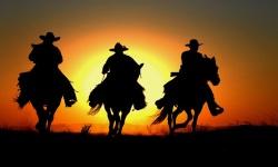Cowboy Best Wallpaper HD screenshot 2/2