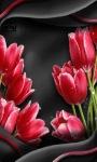 Red Tulip Flower LWP screenshot 1/3