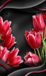 Red Tulip Flower LWP screenshot 3/3