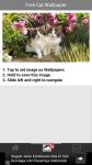 Free Cat Wallpaper screenshot 3/6