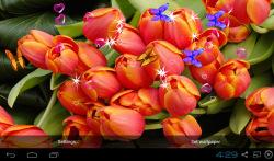 3D Tulip Live Wallpapers screenshot 4/4
