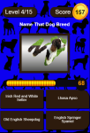 Name That Dog Breed Trivia Educational Kids Game  screenshot 1/3