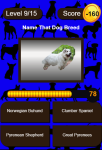 Name That Dog Breed Trivia Educational Kids Game  screenshot 3/3