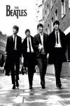 Wallpaper The Beatles HD  screenshot 1/1
