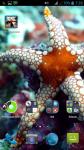 Fish HD Screensaver screenshot 4/4