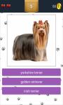 Dog Breeds App Quiz screenshot 3/5