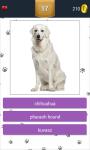 Dog Breeds App Quiz screenshot 5/5