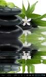 Zen lily screenshot 1/2