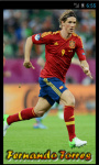 Fernando Torres HD_Wallpapers screenshot 1/3