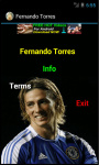 Fernando Torres HD_Wallpapers screenshot 2/3