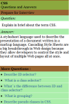 Learn CSS Interview Q A screenshot 2/3