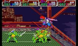 Turtles 5 Teenage Mutant Ninja Turtles  screenshot 1/4