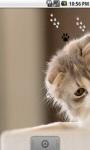 Cute Cool Kitty Live Wallpaper screenshot 1/5