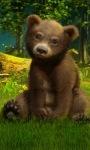 Baby Bear Live Wallpaper screenshot 1/3