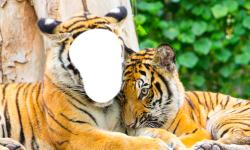 Tiger Photo Montage screenshot 4/6