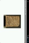 Hammurabi Code of Laws Reader screenshot 3/5
