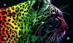 Leopard HD Wallpaper screenshot 1/5